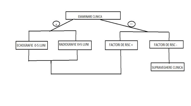 schema de tratament a displaziei articulare